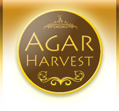 AgarHarvest