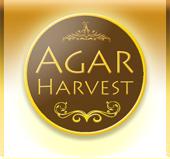 AgarHarvest